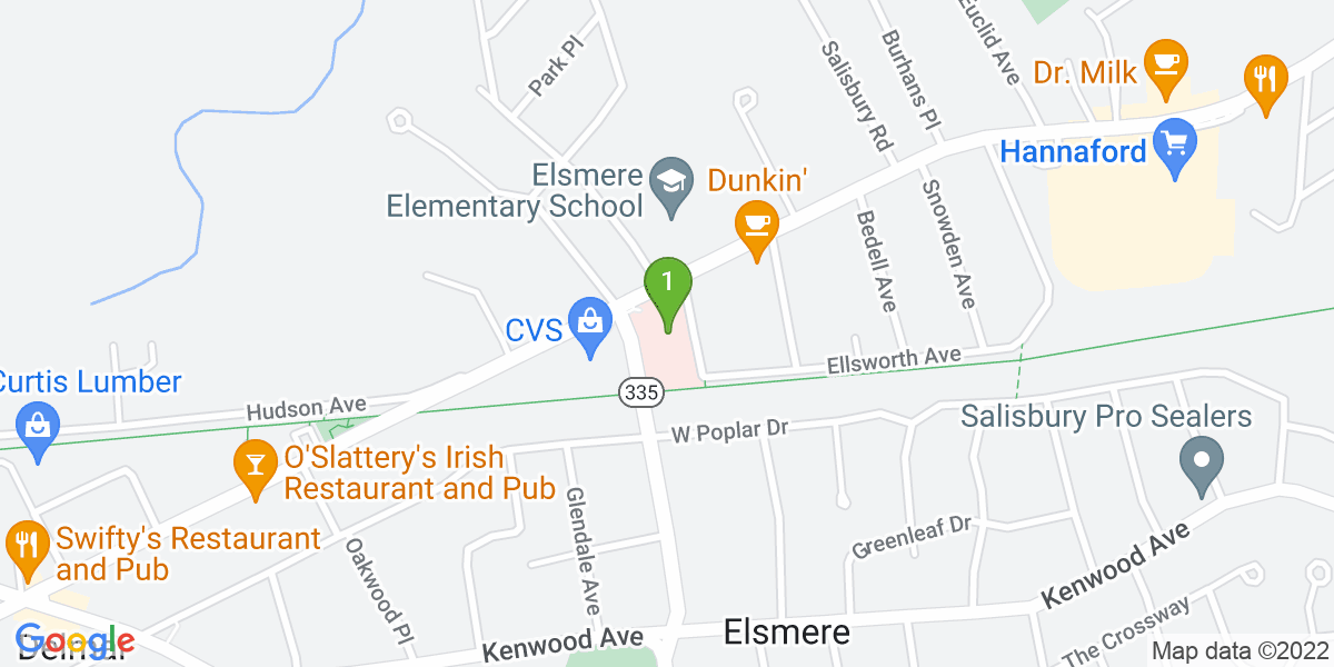 Google Map of 250 Delaware Ave. (Ste 201)  Delmar, NY 12054