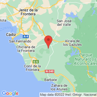 Map - Spectacular equestrian in Costa de la Luz, Medina Sidonia