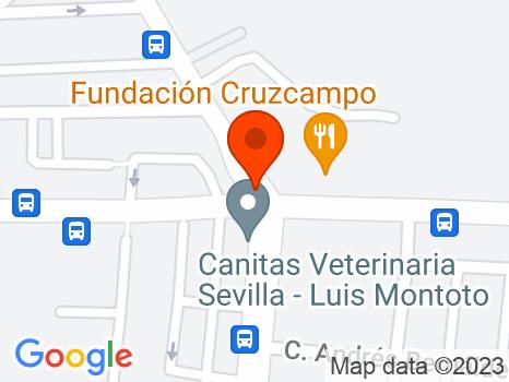 205781 - Avd. Cruz del Campo