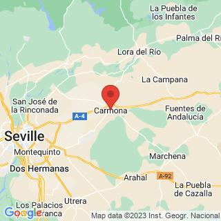 Map - Hacienda, cortijo con 165 hectáreas de terreno, Carmona
