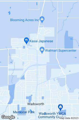 Map of Wadsworth