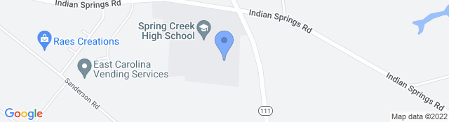 4340 Indian Springs Rd, Seven Springs, NC 28578, USA