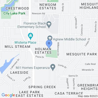 729 Wilkinson Dr, Mesquite, TX 75149, USA