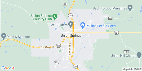 Union Springs Hotels