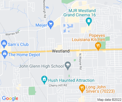 Westland, MI medical transport service