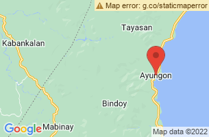 Map of Ayungon, Ayungon Negros Oriental