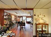 Artemisia Garden Nursery & Gallery