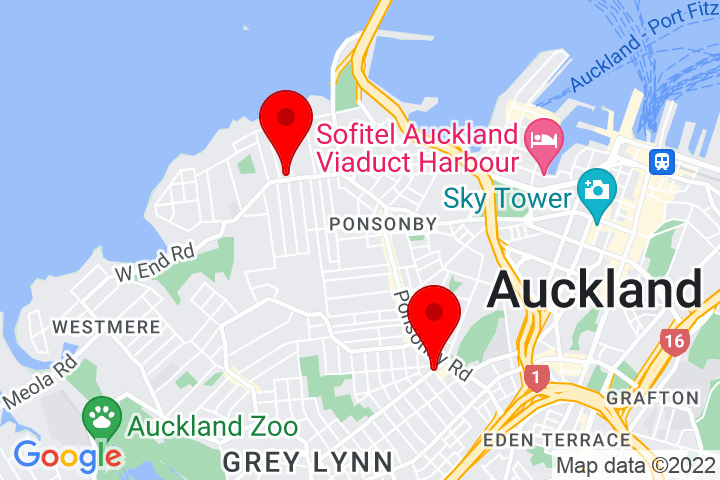 Map of Cnr+Williamson+Ave+and+Pollen+St,+Ponsonby+Auckland+1021