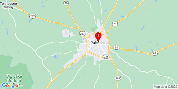 Google Map of Palestine, TX