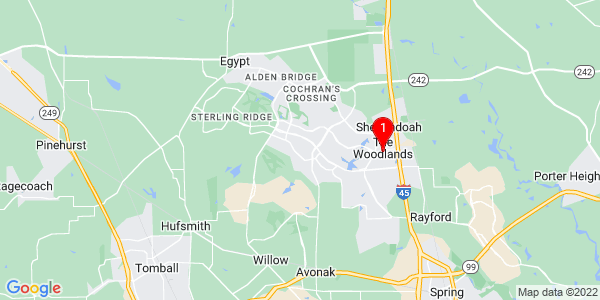 Google Map of The Woodlands, TX