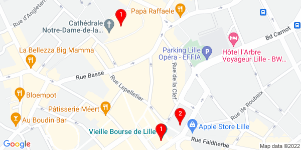 Google Map of Lille