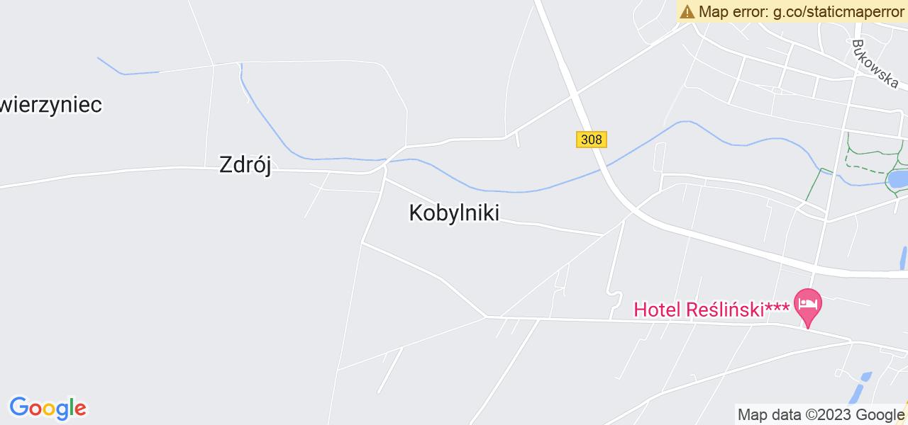 Osiedle Środkowe Kobylniki w Grodzisku Wielkopolskim – w tych punktach ekspresowo wyślesz turbinę do autoryzowanego serwisu