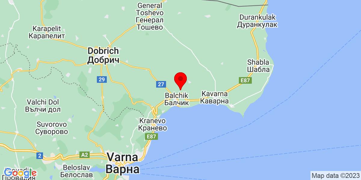 Google Map of царичино