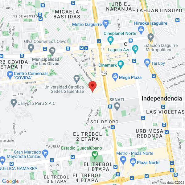 Jr. Manuel Ascencio Segura 332. Los Olivos, Lima.
