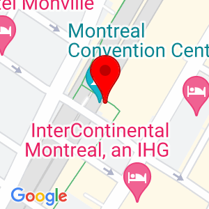 Google Map of 1001 Place Jean-Paul-Riopelle Montréal, QC H2Z 1H5 Canada