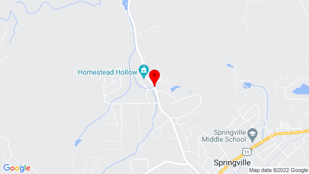 Google Map of 1190 Murphees Valley Rd, Springville, AL 35146