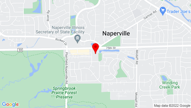 Google Map of 1310 Shepherd Drive, Naperville, IL 60565