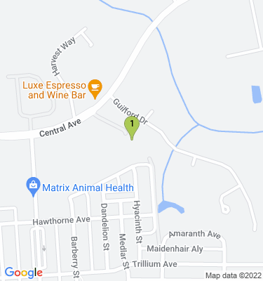 Google Map of 1437 Central Ave. Summerville, SC 29483 U.S.A.