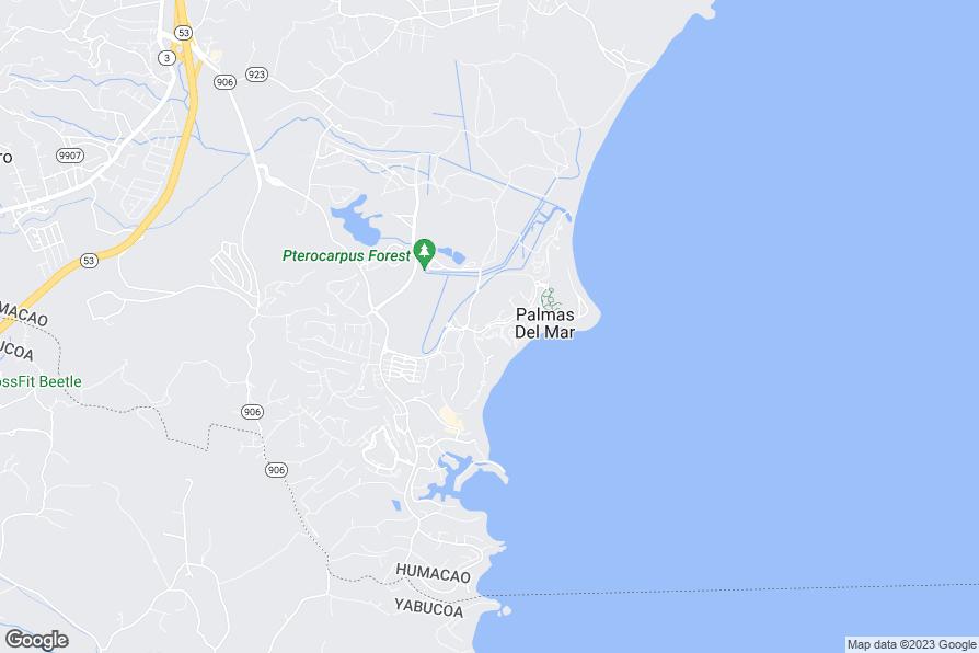 Hotels Near Palmas Del Mar Puerto Rico