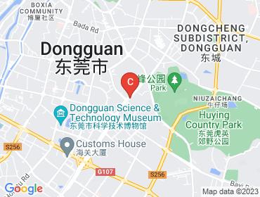 dongsheng store