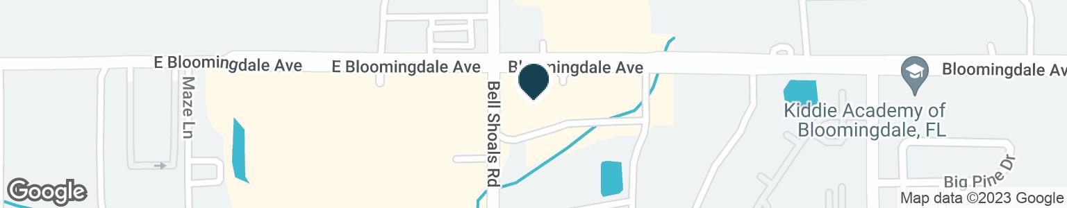 Google Map of1011 BLOOMINGDALE AVE