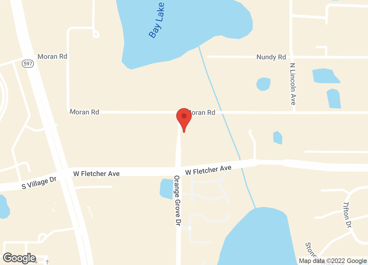 Google Map of VCA Carrollwood Cat Hospital