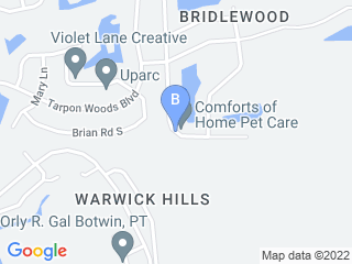 Map of Comforts of Home Pet Care Dog Boarding options in Palm Harbor | Boarding