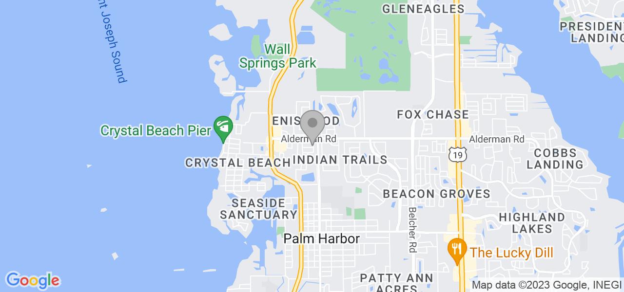1151 Lemon Tree Ln, Palm Harbor, FL 34683, USA