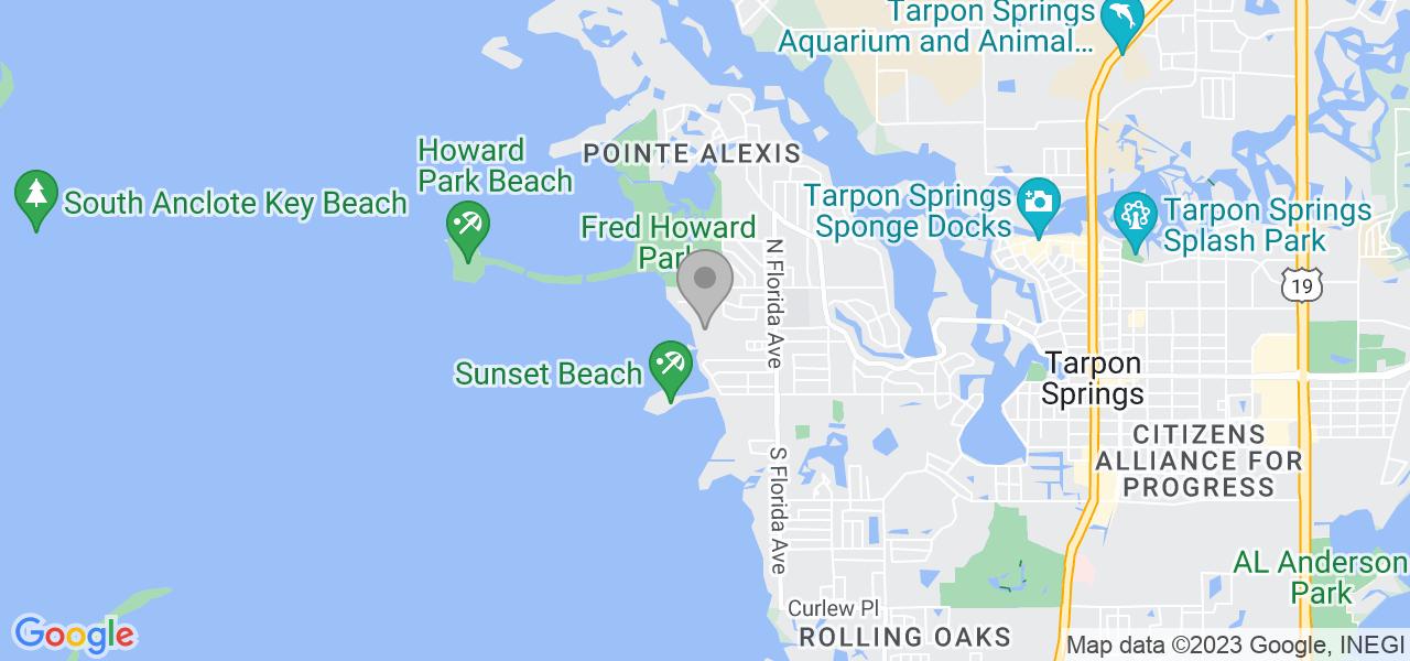 355 Windrush Loop, Tarpon Springs, FL 34689, USA