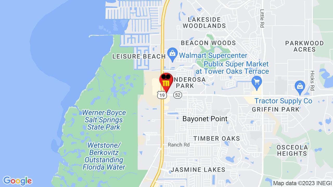 Google Map of Port Richey Pest Control