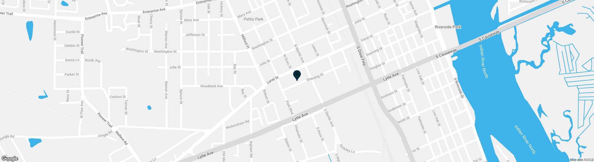 815 Downing Street New Smyrna Beach FL 32168