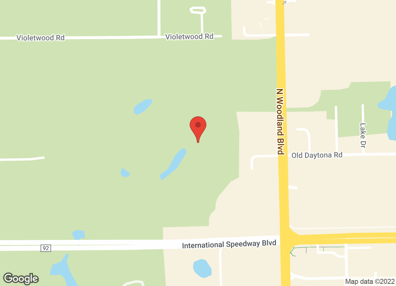 Google Map of VCA DeLand Animal Hospital