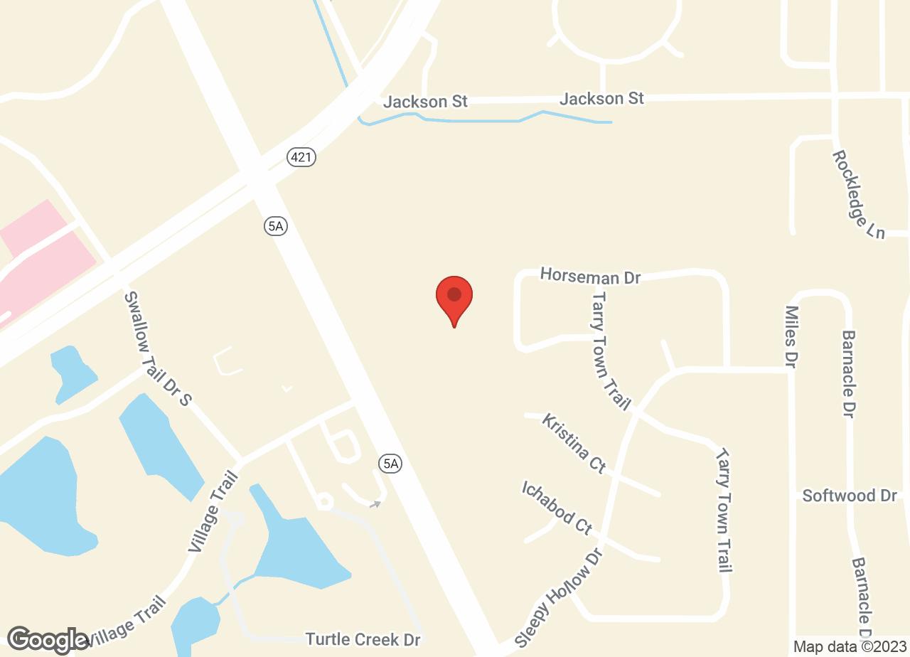 Google Map of VCA Port Orange Animal Hospital