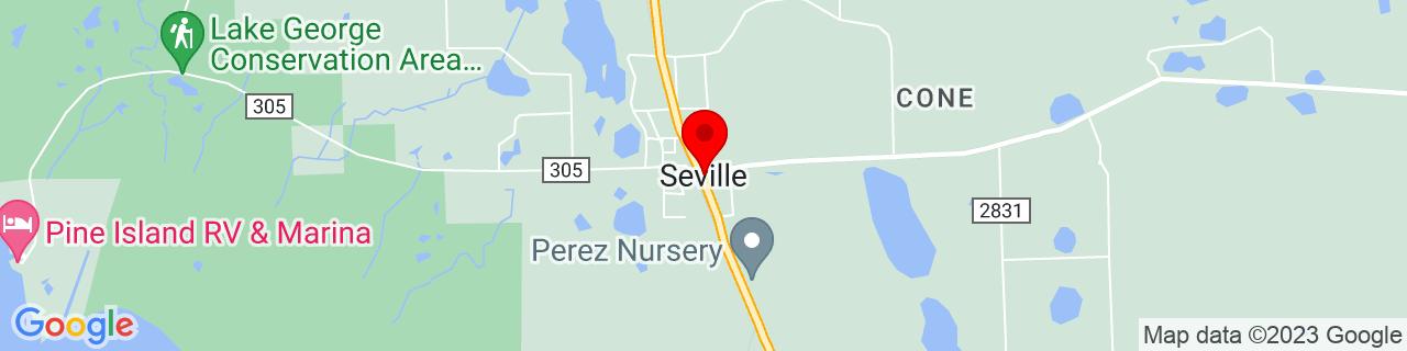Google Map of 29.31692, -81.49257