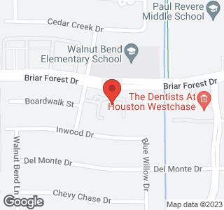10615 Briar Forest Drive Unit 406