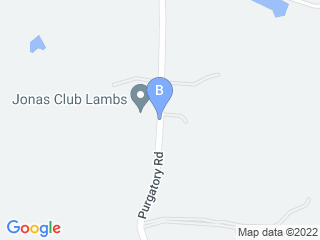 Map of Jins Bed Biscuit Pet Resort Dog Boarding options in New Braunfels | Boarding