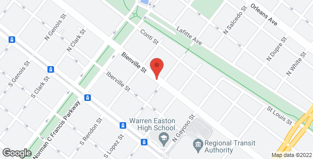 3225 BIENVILLE Street New Orleans LA 70119