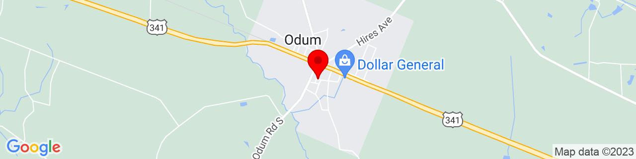Google Map of 31.6627448, -82.0282556