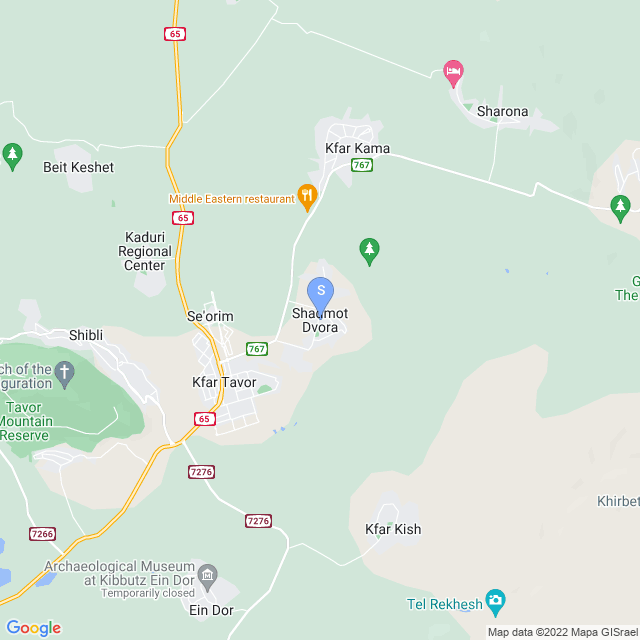 מושב שדמות דבורה, ישראל