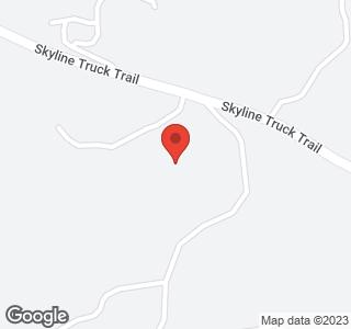 17093 Skyline Truck Trl