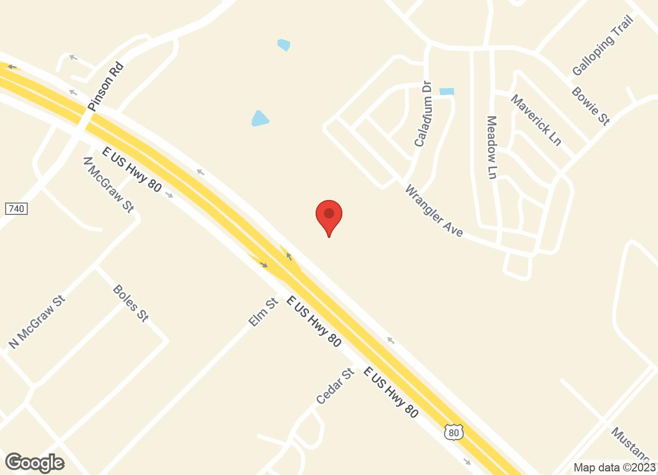 Google Map of VCA Forney Animal Hospital