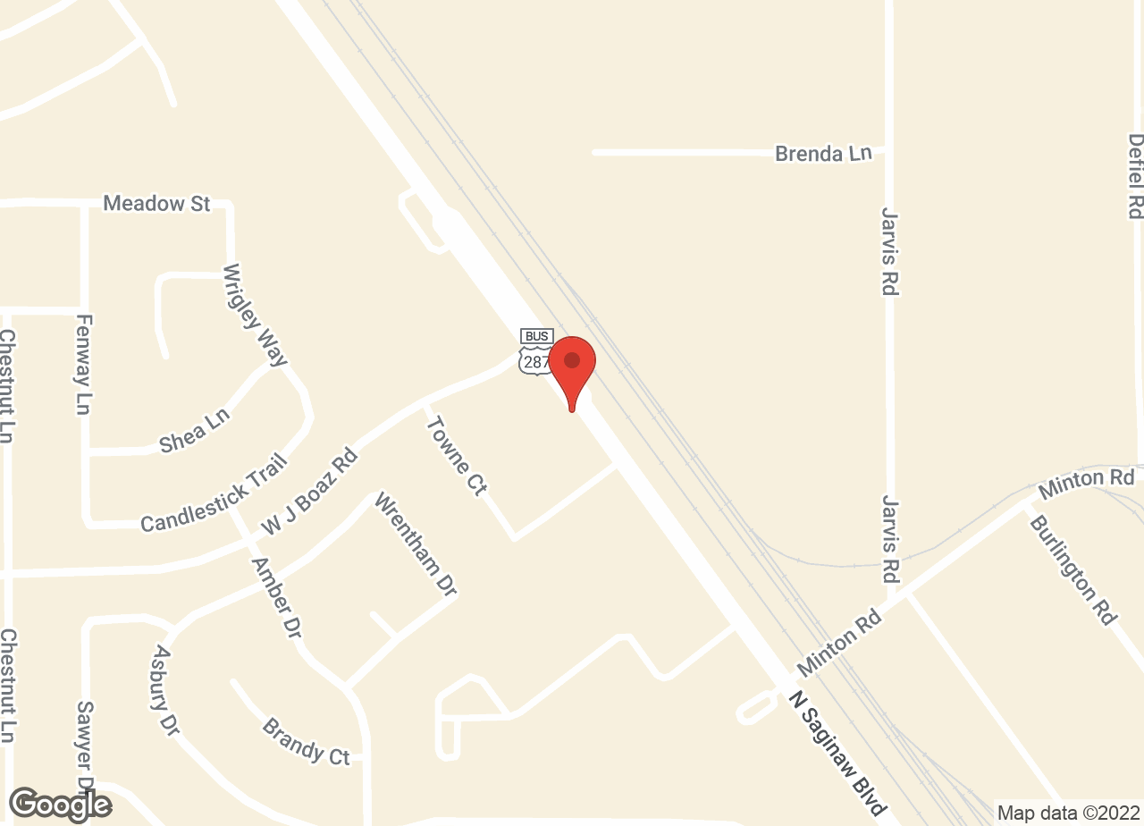 Google Map of VCA Saginaw Animal Hospital