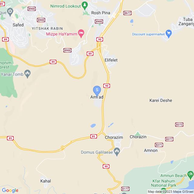 עמיעד, ישראל