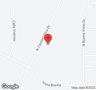 8389 N Camino Rica Lot #84