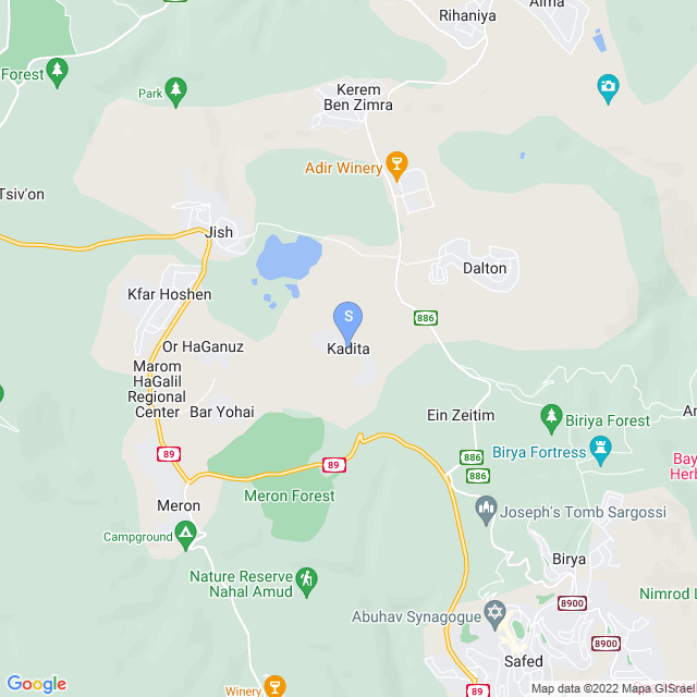 קדיתא, ישראל