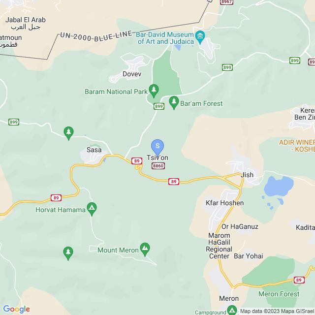 צבעון, ישראל