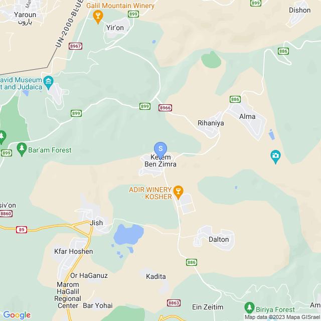 כרם בן זמרה, ישראל