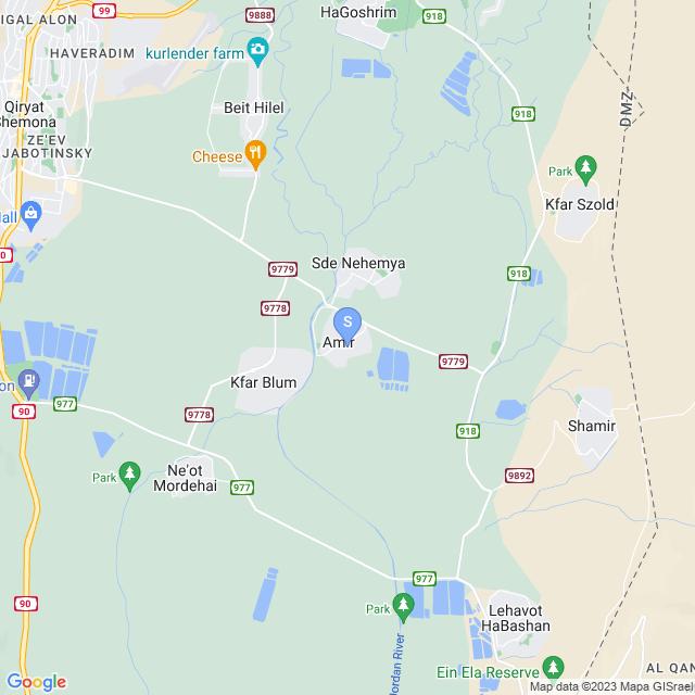 עמיר, ישראל