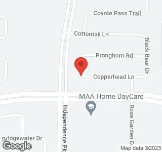 9917 Copperhead Lane