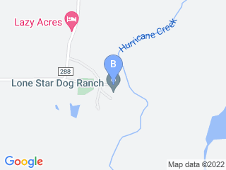 Map of Lone Star Dog Ranch Dog Boarding options in Anna | Boarding